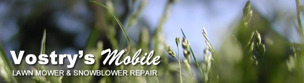 Vostry's Mobile Tune Up